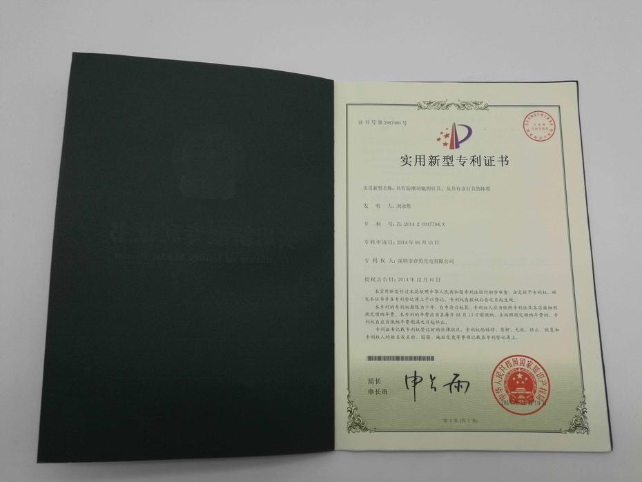 led patent (8)