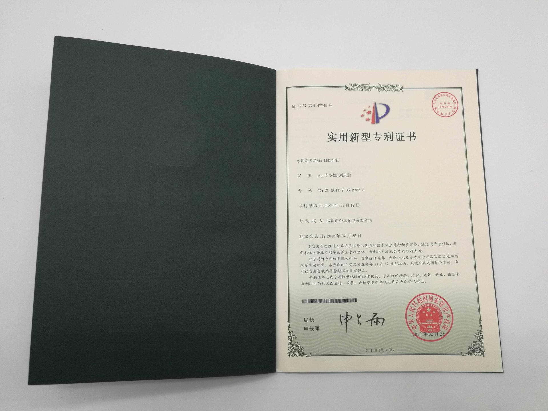 led patent (12)