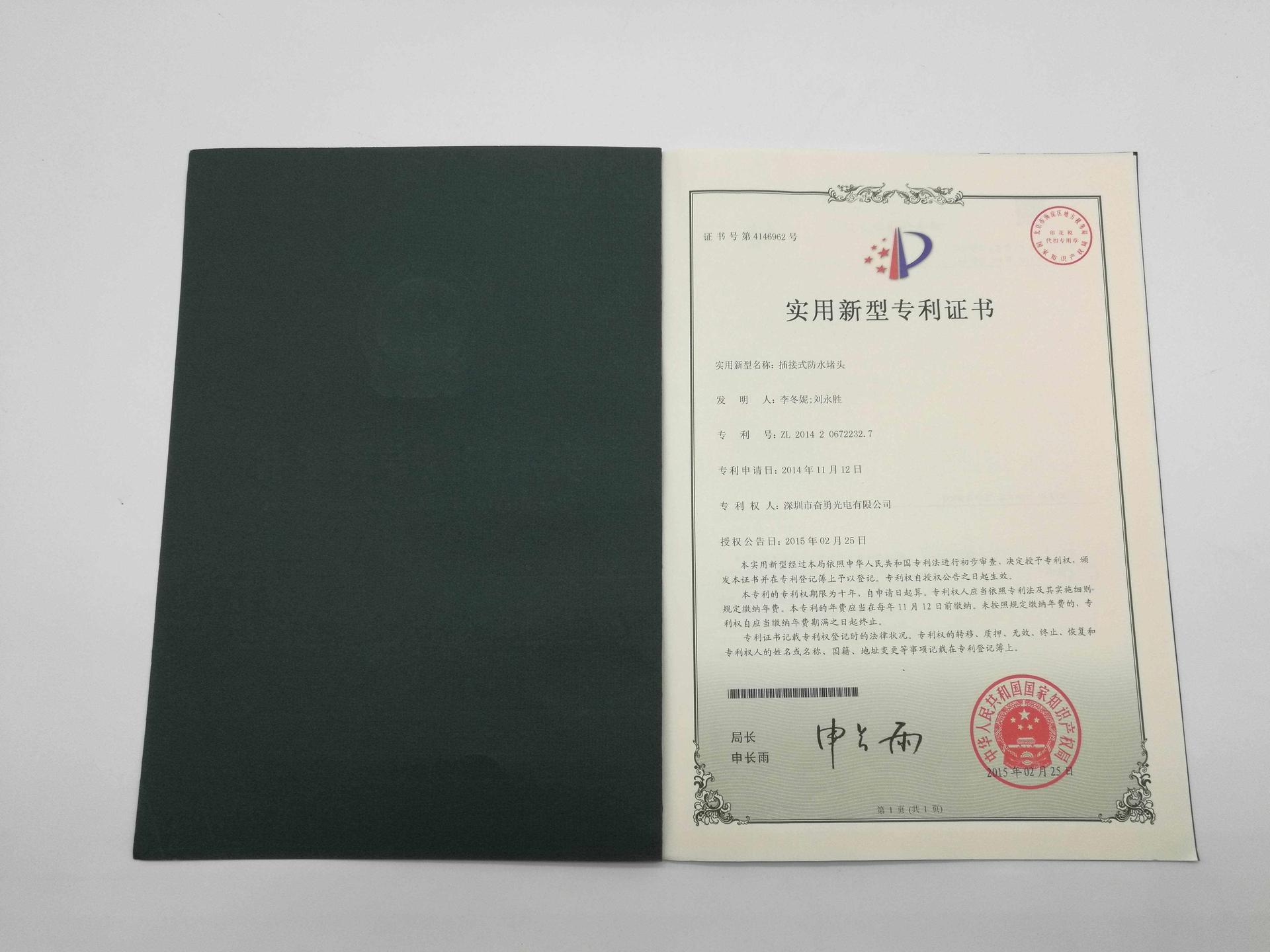 led patent (14)