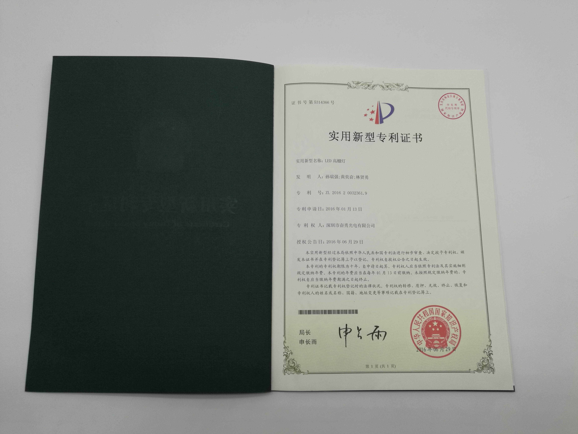 led patent (15)