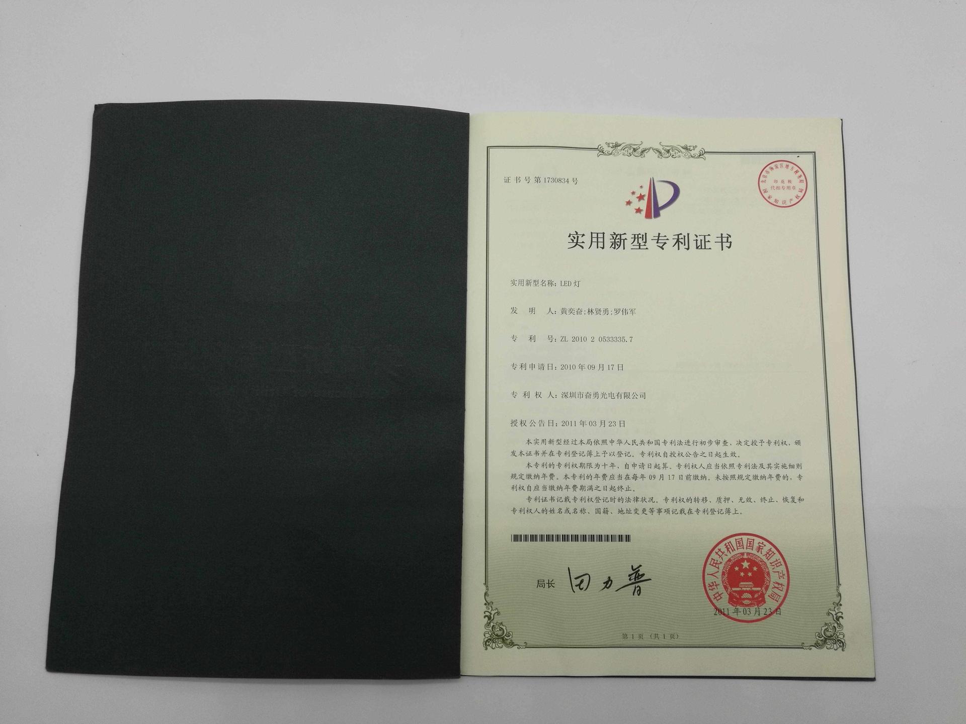 led patent (19)